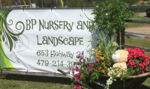 BP Nursery Address